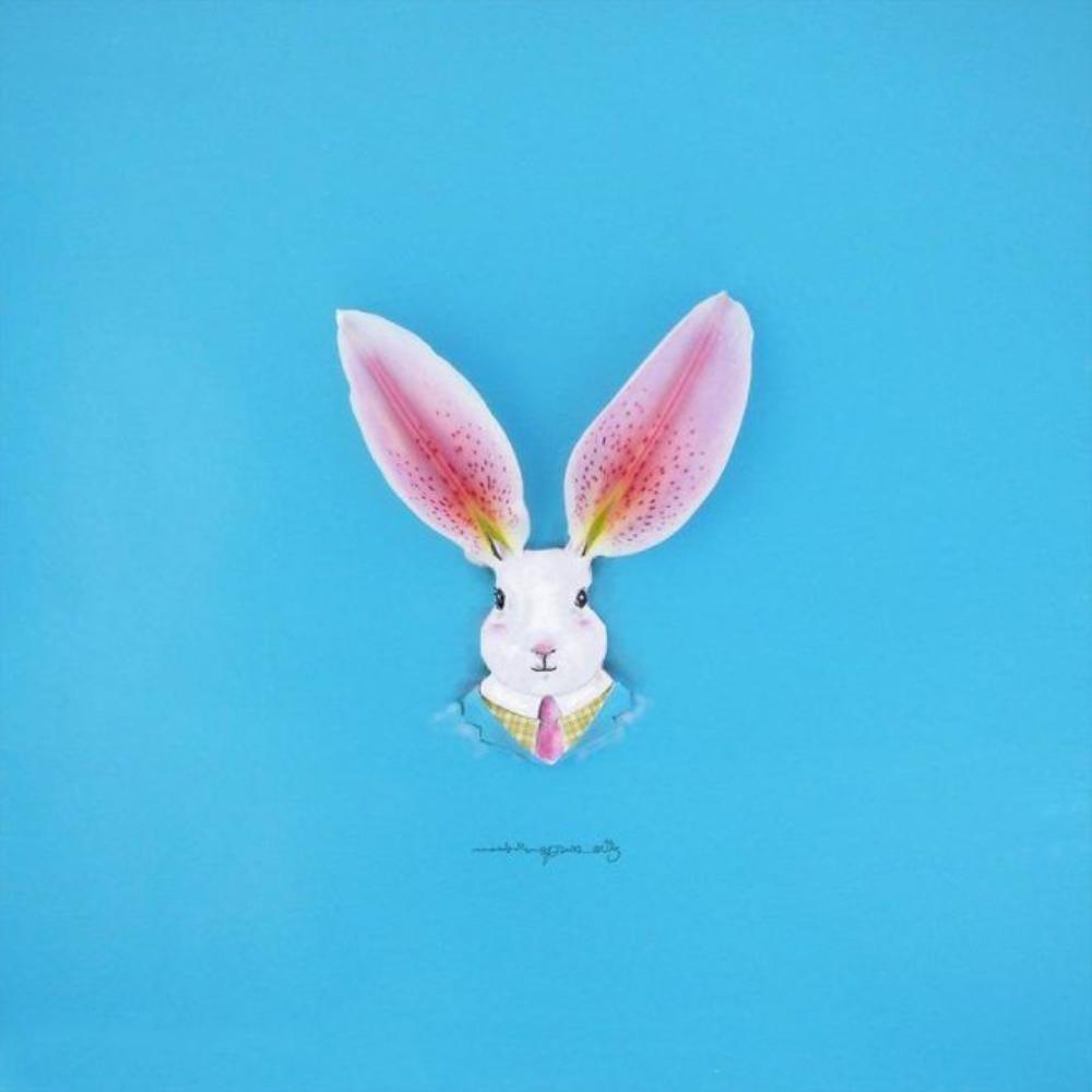 Chú thỏ con với hai chiếc tai làm từ cánh hoa lan hồng nhạt mang vẻ ngộ nghĩnh, đáng yêu.