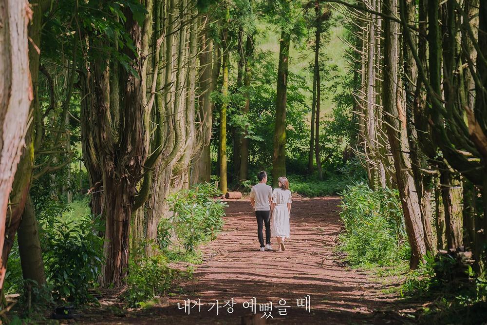 Lộ ảnh hôn lễ đẹp như cổ tích của Im Soo Hyang và Ha Seok Jin Ảnh 15