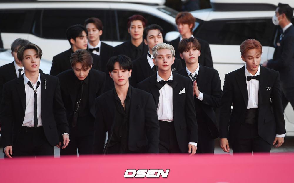 Thảm đỏ hot nhất Hàn Quốc: SEVENTEEN tỏa sáng cùng Hyun Bin, Gong Hyo Jin, Kim Hee Ae và Kang Ha Neul Ảnh 24