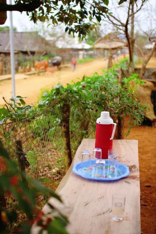 Cuộc sống ở thôn Cu Vai nơi 46 hộ dân sống biệt lập giữa núi rừng Yên Bái Ảnh 3