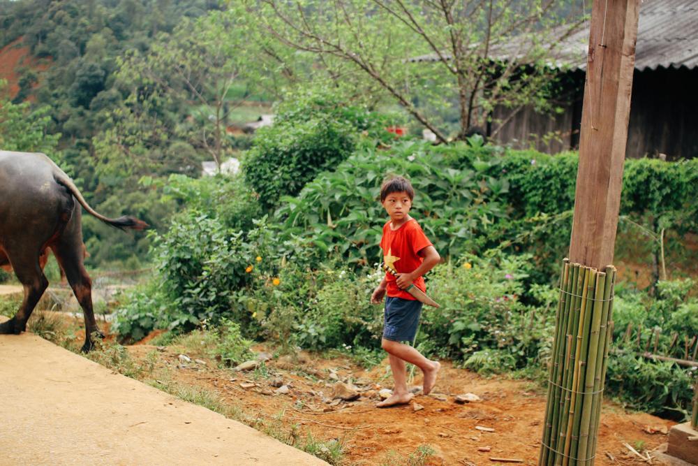 Cuộc sống ở thôn Cu Vai nơi 46 hộ dân sống biệt lập giữa núi rừng Yên Bái Ảnh 5