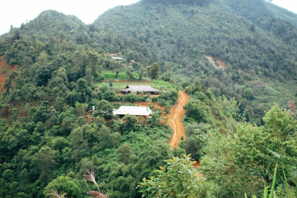 Cuộc sống ở thôn Cu Vai nơi 46 hộ dân sống biệt lập giữa núi rừng Yên Bái Ảnh 9