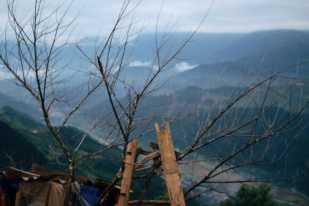Cuộc sống ở thôn Cu Vai nơi 46 hộ dân sống biệt lập giữa núi rừng Yên Bái Ảnh 12