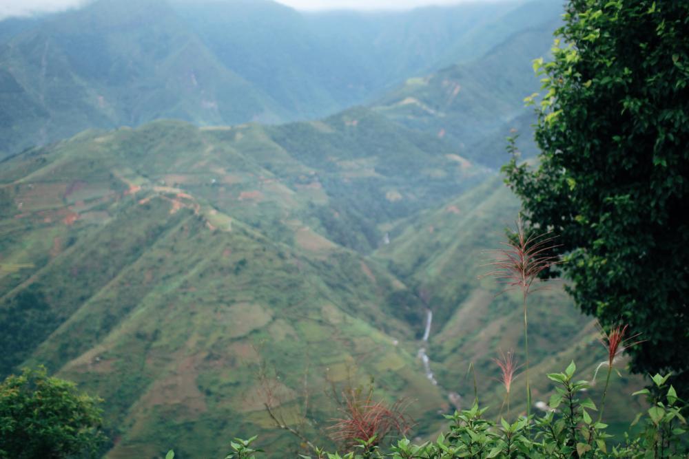 Cuộc sống ở thôn Cu Vai nơi 46 hộ dân sống biệt lập giữa núi rừng Yên Bái Ảnh 15