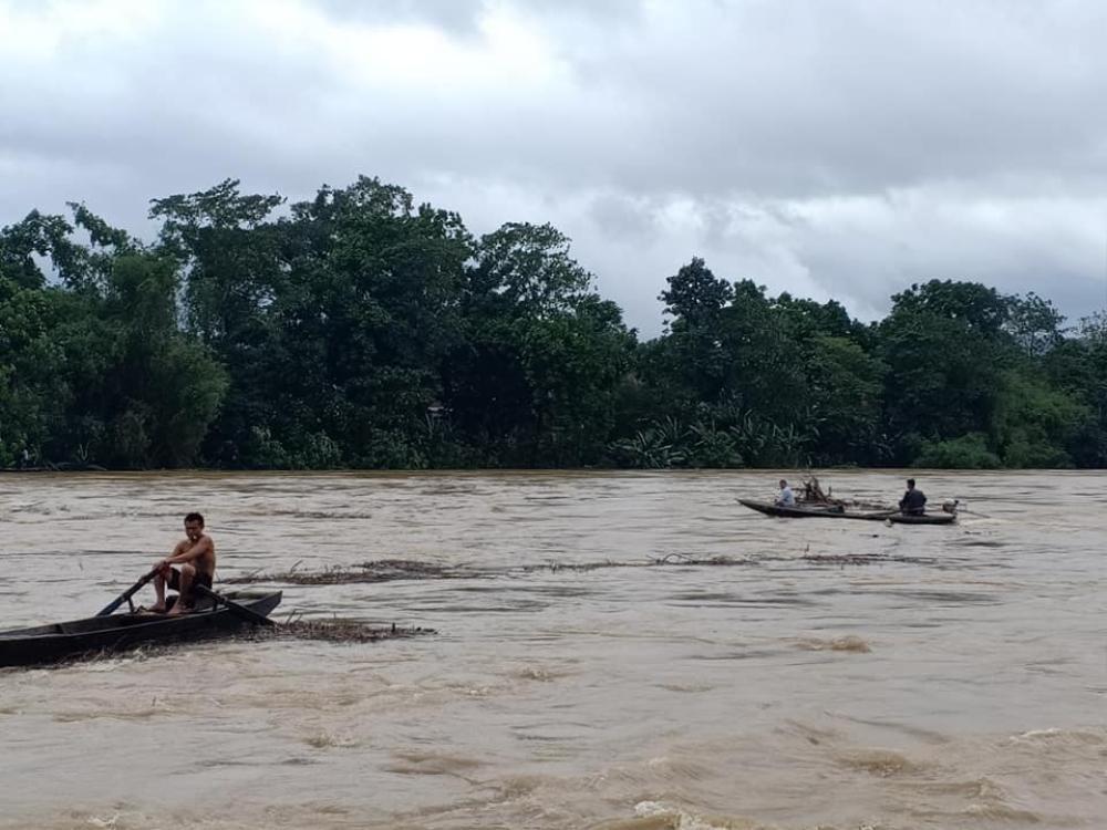 Hà Tĩnh: Người dân vẫn liều mình vớt củi dù nước sông dâng cao Ảnh 2