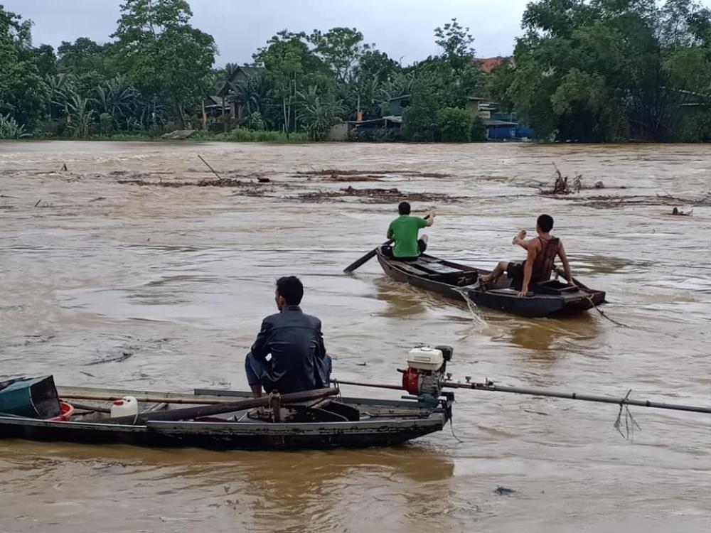 Hà Tĩnh: Người dân vẫn liều mình vớt củi dù nước sông dâng cao Ảnh 3