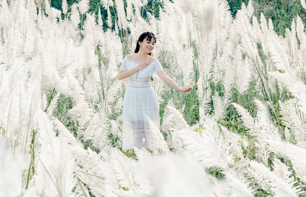 Cánh đồng cỏ lau ở Hà Nội đã vào mùa khoe sắc trắng, đẹp đến ngỡ ngàng Ảnh 1