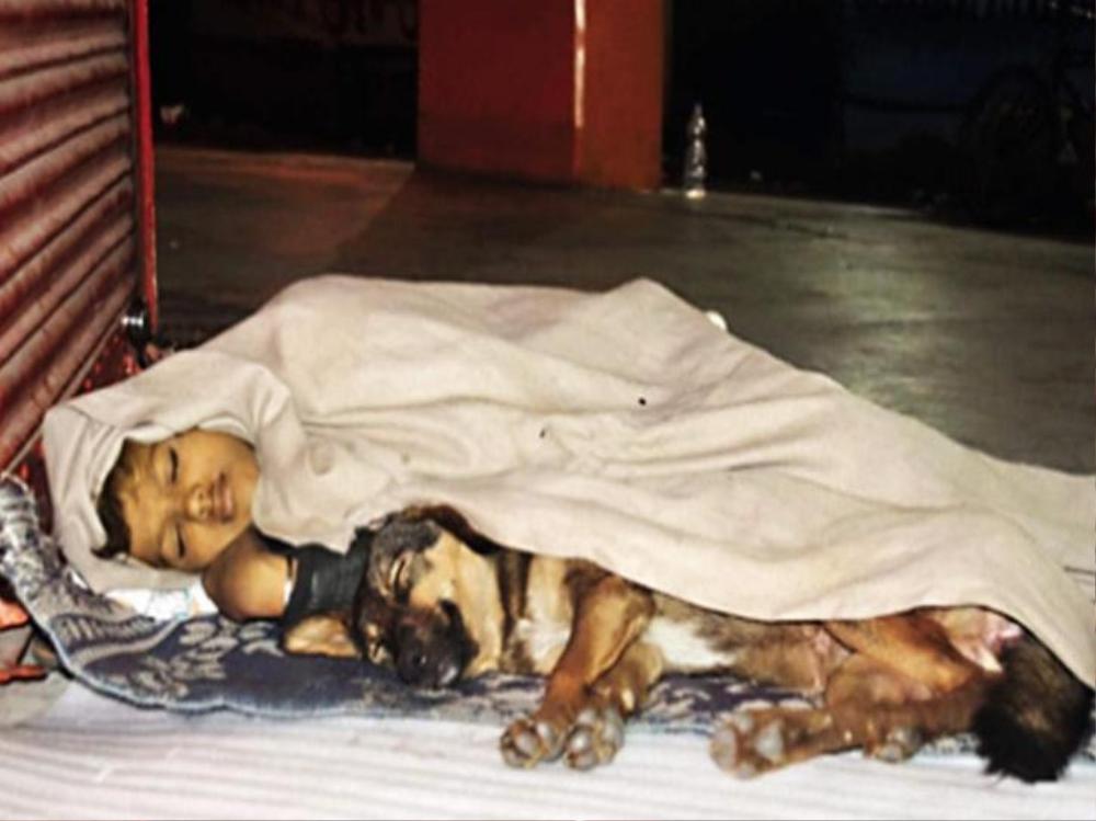 Cha ngồi tù, mẹ bỏ rơi, đứa trẻ vô gia cư sống cùng chó làm tan chảy bao trái tim Ảnh 1