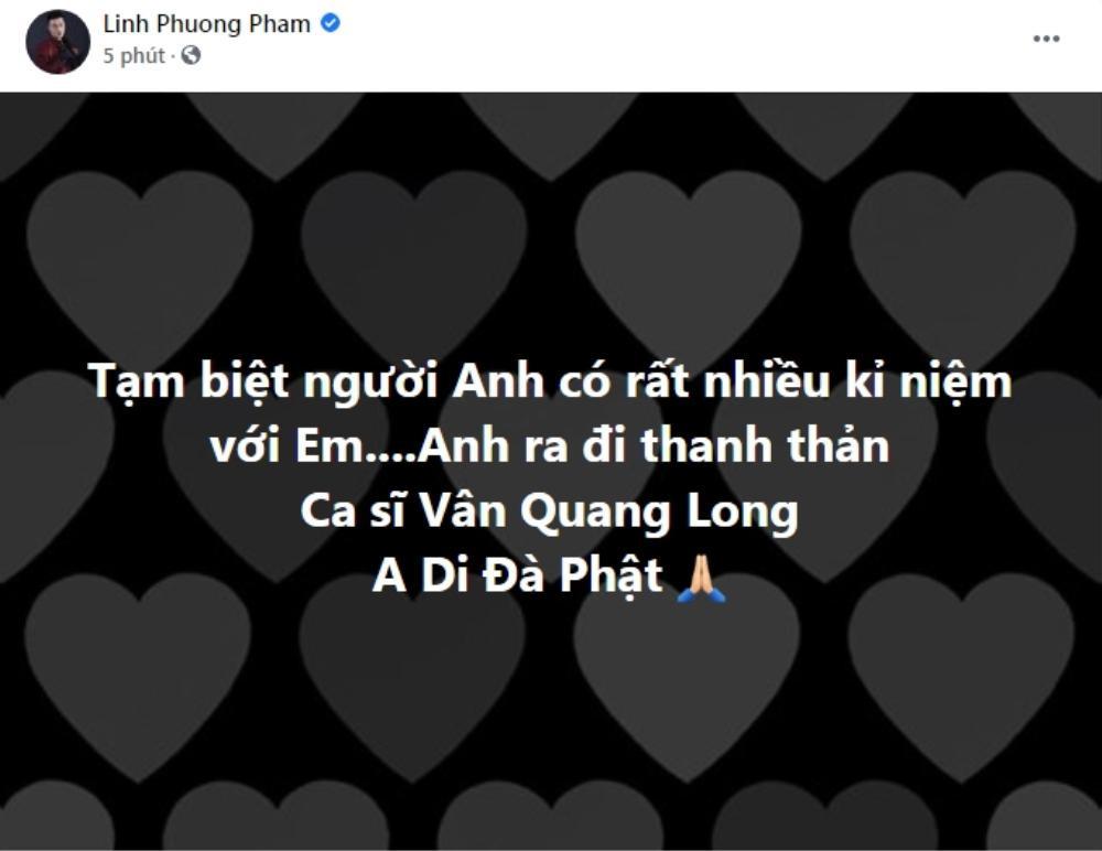 Đan Trường, Lâm Chấn Huy, Nguyên Vũ, Lâm Hùng... đau đớn khi Vân Quang Long qua đời Ảnh 3