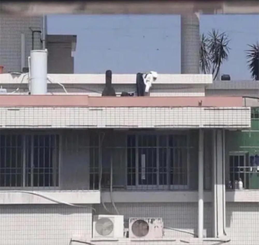 Diễn 'cảnh nóng' ngay trên sân thượng, cặp đôi khiến cộng đồng mạng nhức mắt Ảnh 2