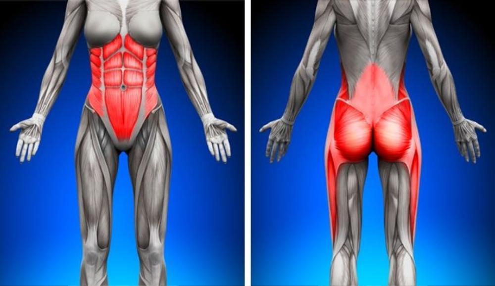 Cơ thể thay đổi thần kỳ nhờ tập plank mỗi ngày Ảnh 1