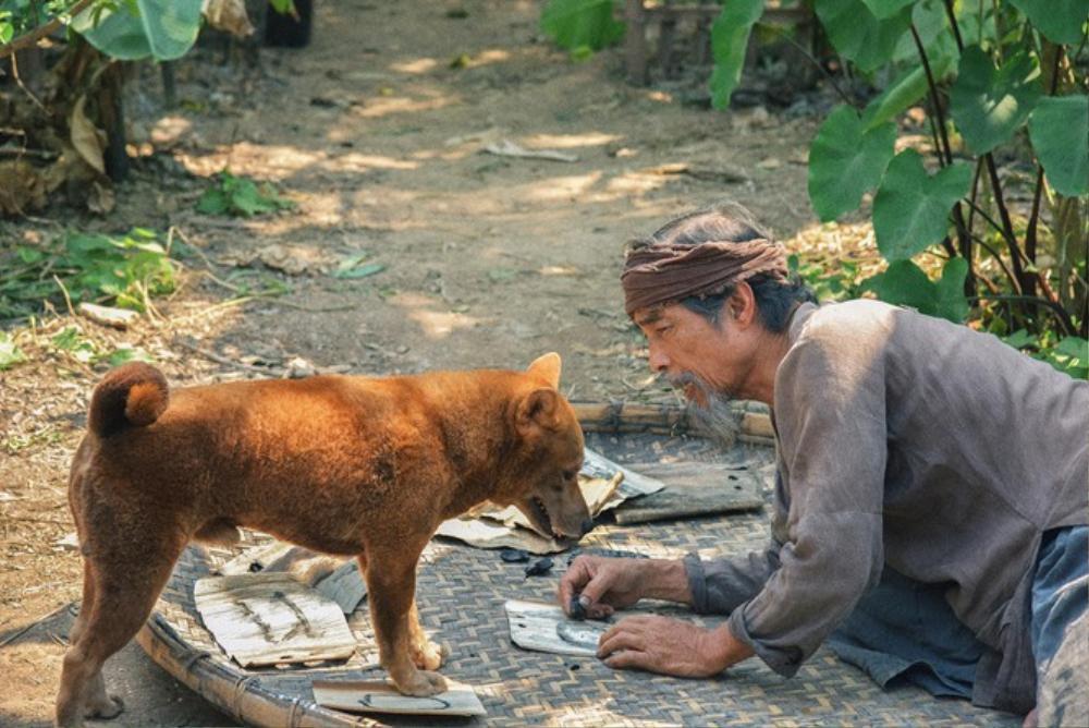 Review 'Cậu Vàng': Tái hiện bức tranh làng quê đầy đau thương và ám ảnh trong kiệt tác văn học Việt Ảnh 6