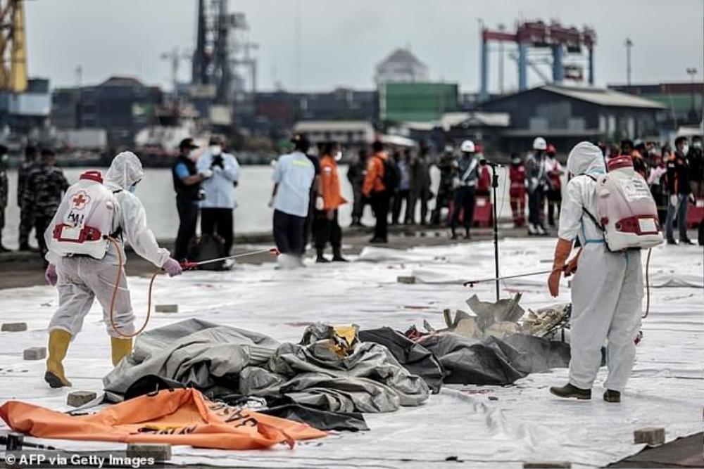 Vụ rơi máy bay Indonesia: Hé lộ thông tin mới nhất và những tin nhắn cuối cùng đầy xót xa của hành khách Ảnh 1
