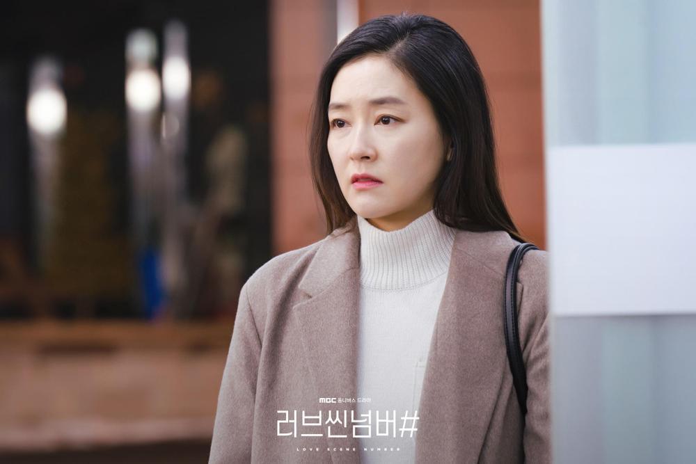 Ryu Hwa Young - Kim Bo Ra dùng chiêu trò 'gạ tình' đàn ông, có nên xem 'Sắc thái tình yêu'? Ảnh 14