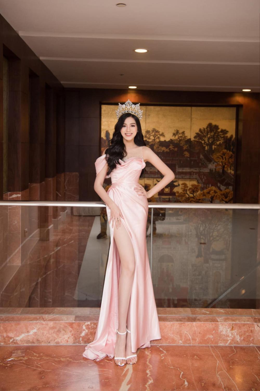 Đụng hàng Hoa hậu Đỗ Thị Hà, Ngọc Trinh vẫn ghi điểm khi đính hàng nghìn viên đá lên tóc Ảnh 2