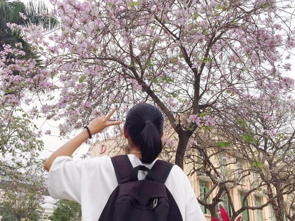Tháng 2 này, đẹp nao lòng với ngôi trường ở Hà Nội nở rộ sắc tím hoa ban Ảnh 3