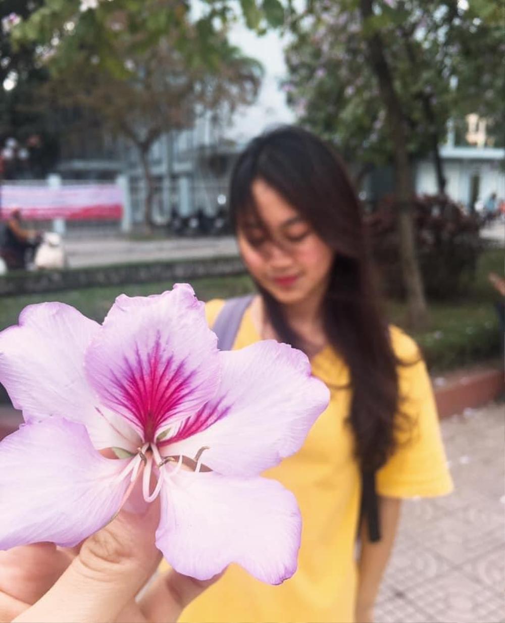 Tháng 2 này, đẹp nao lòng với ngôi trường ở Hà Nội nở rộ sắc tím hoa ban Ảnh 7
