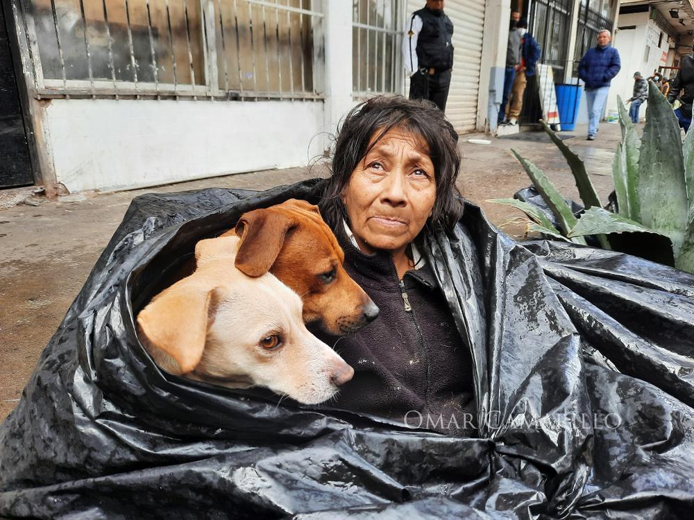 Bà lão nhất quyết sống trong túi rác 8 năm không chịu đi, lý do đằng sau khiến ai nghe cũng rơi nước mắt Ảnh 1