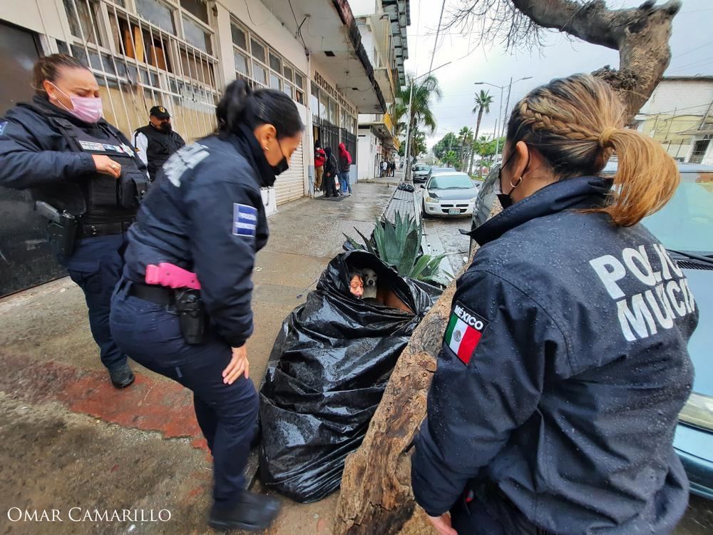 Bà lão nhất quyết sống trong túi rác 8 năm không chịu đi, lý do đằng sau khiến ai nghe cũng rơi nước mắt Ảnh 3