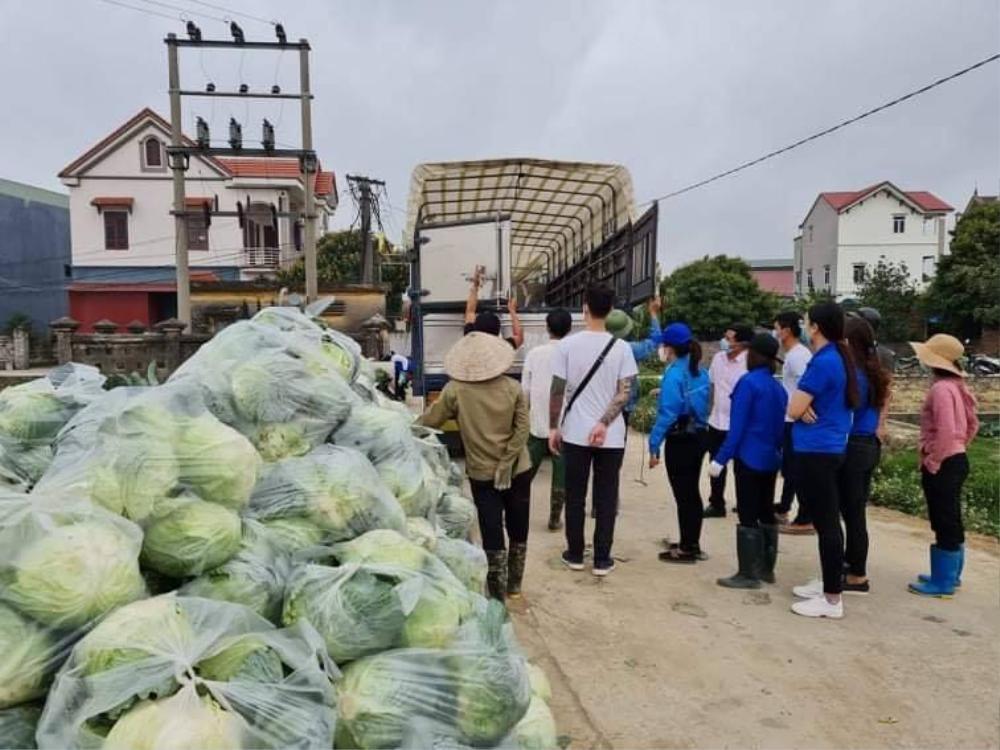 Vợ chồng Tuấn Hưng - Hương Baby giải cứu nông sản giúp bà con Hải Dương Ảnh 3