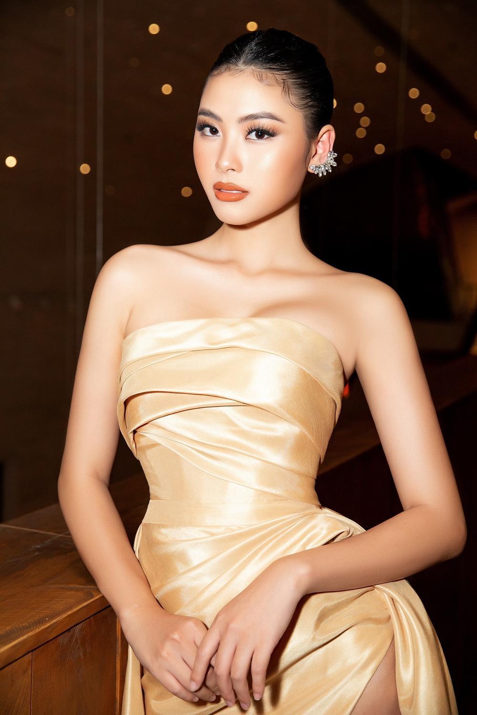 Rộ tin Miss Supranational tổ chức vào tháng 8: Đào Hà hay Lê Thu Trang sẽ là đại diện Việt Nam? Ảnh 7