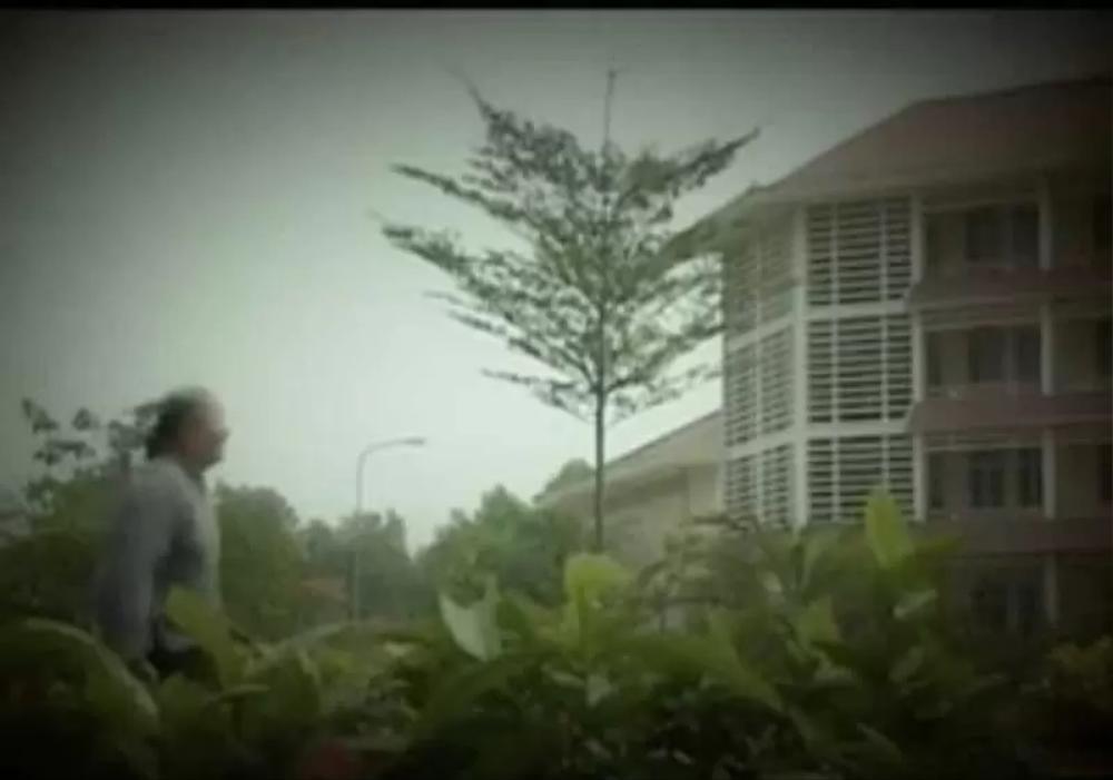 Phát hiện thú vị: Trường ĐH Nông Lâm TP.HCM 14 năm trước đã xuất hiện trong MV của ca sĩ nổi tiếng Ảnh 5