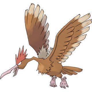Fearow cũng xuất hiện là một trong số những loài chim bay lượn trên bầu trời Ryme