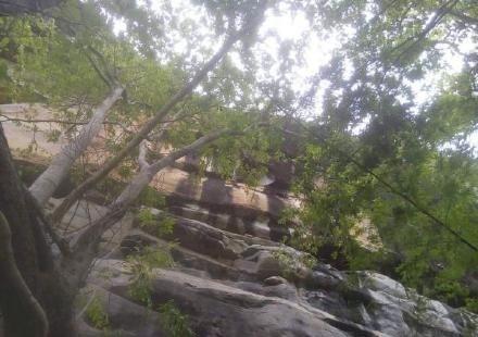 Vị trí người phụ nữ mang thai rơi xuống vách núi.