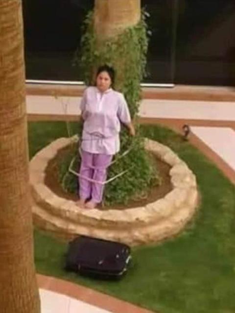 Cô Acosta Baruelo, 26 tuổi bị trói vào một cây lớn do để quên đồ nội thất của chủ nhân ngoài trời.