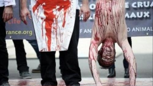 Cuộc biểu tình được tổ chức bởi nhóm chiến dịch 269 Life, như là một phần của Ngày ăn chay Quốc tế, vốn là một sự kiện thường niên kể từ năm 2009. Hình ảnh người đàn ông bị treo ngược tượng trưng cảnh thường thấy tại các lò mổ với 2 tên đồ tể đứng kế bên.