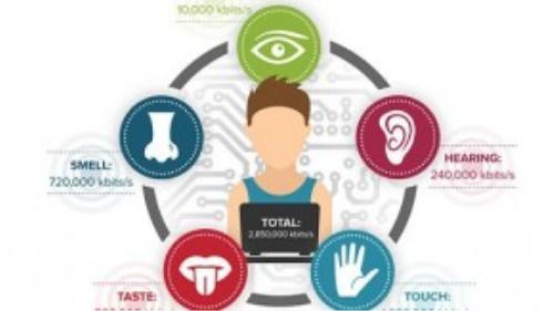 Thông tin tiếp nhận của 5 giác quan đều có thể truyền tải thành dữ liệu và gửi đi qua Internet.