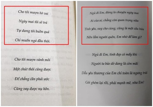 Hai đoạn thơ có phần lời giống hai ca khúc Người lạ ơi và Tình nhân ơi của Châu Đăng Khoa.