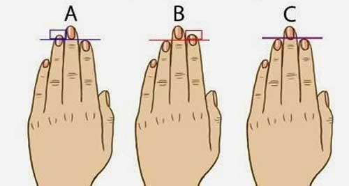 So sánh độ dài ngón tay trỏ và áp út có thể nói lên tính cách của bạn.