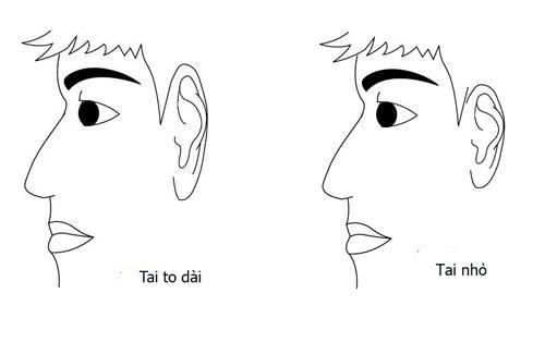 Người có tai to hay tai nhỏ đều có những tính cách khác nhau.