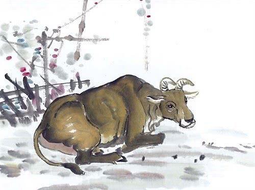 Tuổi Sửu là một trong 3 con giáp nam tiêu hoang nhưng lại đưa hết tiền cho vợ con sau khi kết hôn.