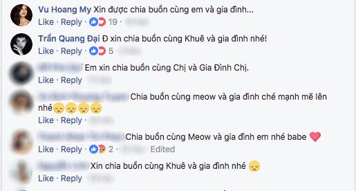 Nhiều nghệ sĩ Việt chia buồn trước sự mất mát của gia đình Lan Khuê.