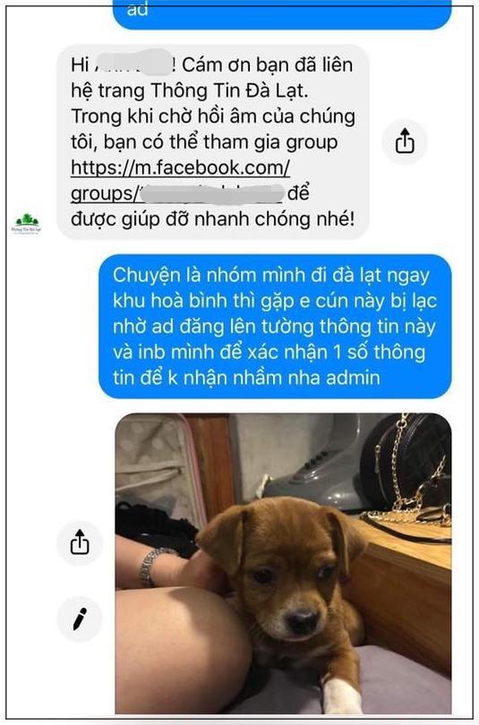 Tin nhắn cô gái gửi cho một fanpage Đà Lạt để nhờ đăng bài tìm kiếm.