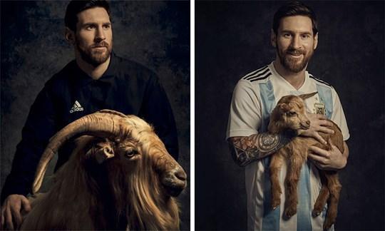 Trước thềm World Cup 2018, Messi từng chụp hình với 1 chú dê, mang ý nghĩa anh là GOAT (Greatest Of All Time - Cầu thủ vĩ đại nhất mọi thời đại).