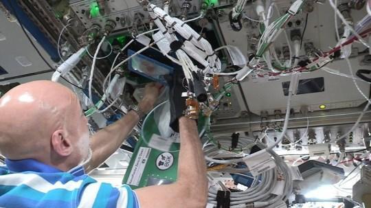 Chỉ huy Luca Parmitano nướng bánh quy trên Trạm Vũ trụ Quốc tế.