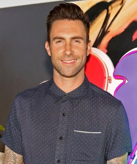 Cha của Adam Levine chính là người thành lập ra chuỗi quần áo bán lẻ M. Fredric. Nhờ sự giàu có của gia đình mà Adam được theo học ngôi trường tư danh giá Brentwood School ở Los Angeles, nơi anh gặp hai thành viên trong nhóm nhạc Maroon 5 hiện tại.