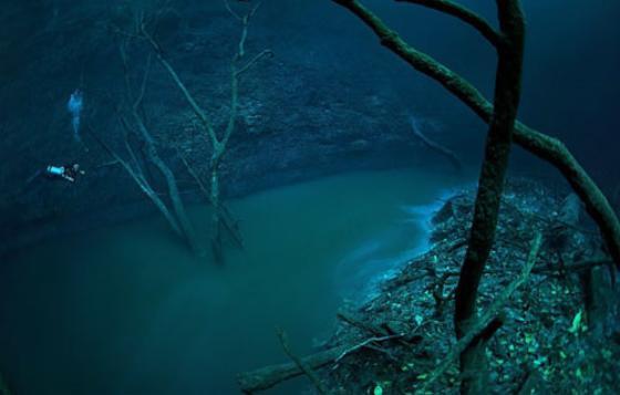 Khi nhìn thấy dòng sông ở dưới nước, đám thợ lặn của Anatony đã không thốt thành lời. Ảnh: Brightside.