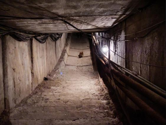 Từ căn cứnghiên cứu vũ khí tối mật của quân đội Liên Xô, qua năm tháng, nơi này đã chuyển thành địa điểm nghiên cứucác hạt vật chất bí ẩn xuất hiện trong không gian.