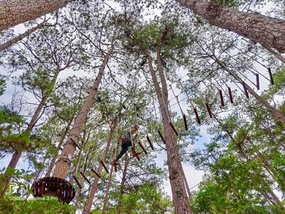 Chụp từ dưới lên là góc ảnh được ứng dụng nhiều trong khi Xuân Tài trải nghiệm trò chơi High Rope này. Máy tái tạo màu tốt, tách được màu xanh của cây với nền trời.