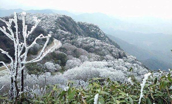 Khu vực vùng núi phía Bắc nhiều khả năng sẽ xuất hiện băng giá trong hôm nay, 29/1. Ảnh minh họa