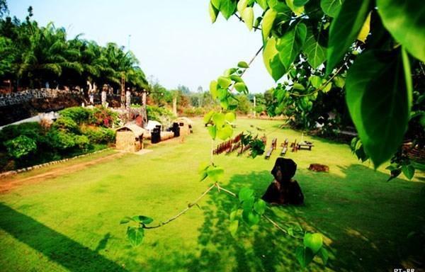 Khám phá một số địa điểm picnic cuối tuần gần Sài Gòn ảnh 0