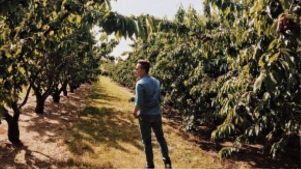 Melbourne mùa này là thời điểm của những quả mâm xôi, cherry và táo chín mọng. Tất nhiên anh chàng điển trai của chúng ta không thể bỏ qua dịp này.