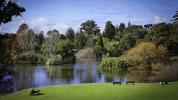 Nằm cách trung tâm không xa, Royal Botanic Gardens được đánh giá là một trong những vườn bách thảo tốt nhất thế giới, nơi đây thu hút 1,5 triệu du khách mỗi năm.