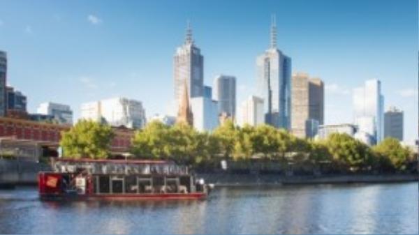 Đi thuyền trên sông Yarra không chỉ là cách tuyệt vời nhất để ngắm cảnh, mà còn là chuyến khám phá lịch sử của con sông được ví như trái tim của Melbourne. Có rất nhiều du thuyền cho du khách lựa chọn, phổ biến nhất là Birrarung Marr và Williamstown.