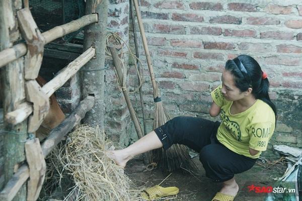 Chị được chính quyền xã hỗ trợ mua bò giống để làm kế sinh nhai.