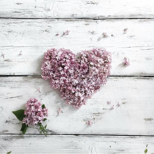 Một trái tim thế này đã đủ làm bạn xiêu lòng chưa?